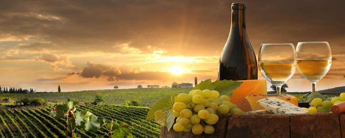 Wineries And Wine Tours Near 171 On High Motel In Blenheim NZ